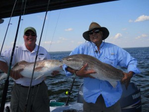 Two Bull Reds