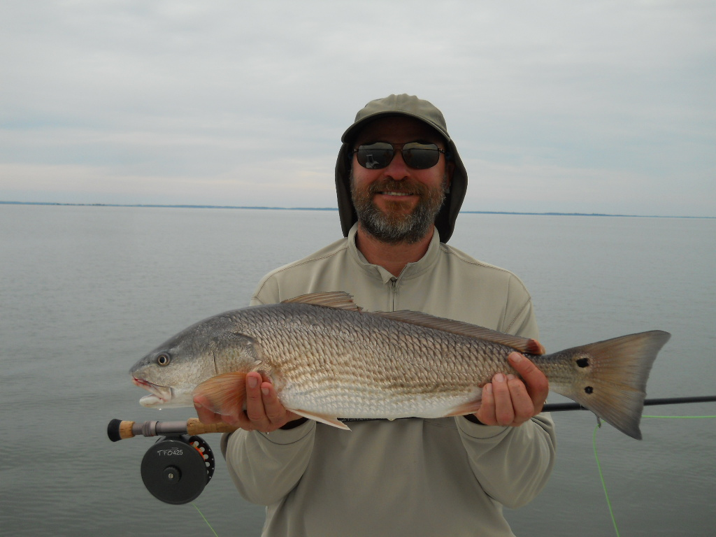 Hilton head fly fishing fly fishing for redfish for Fly fishing redfish
