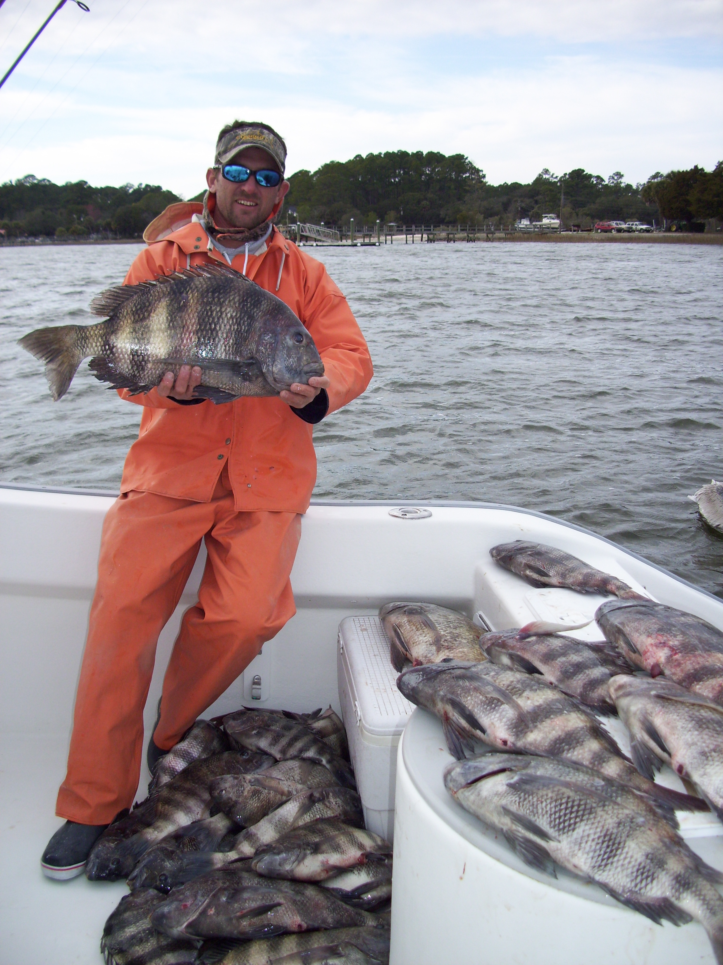 sheepshead fishing charters in hilton head south carolina