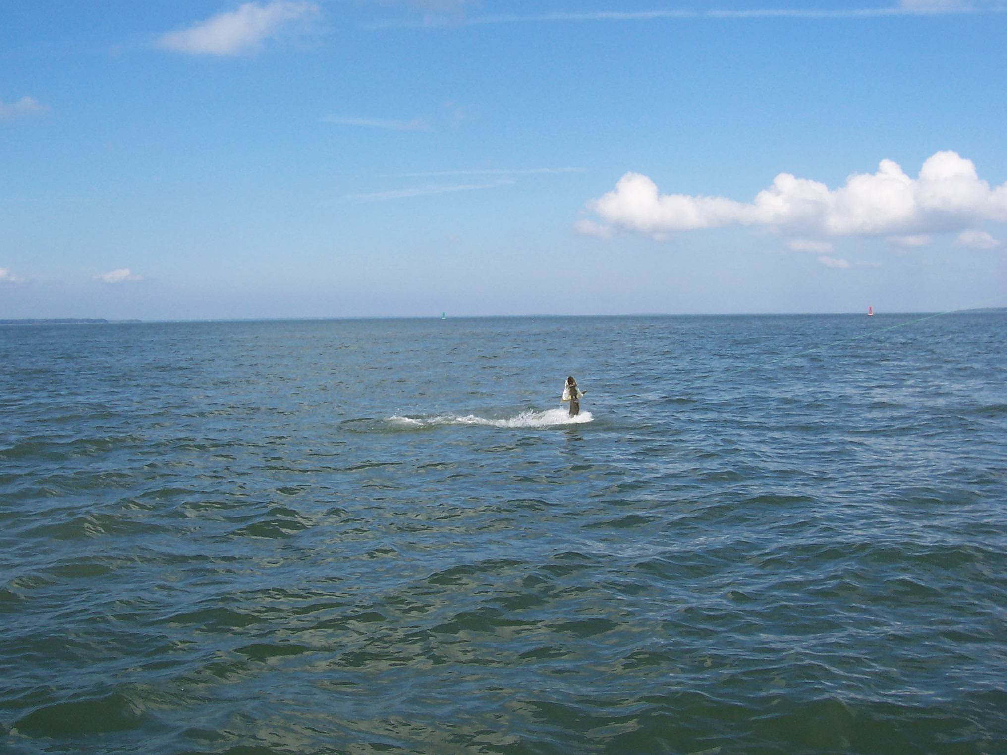 Tarpon fishing charters in hilton head island south for Fishing in hilton head