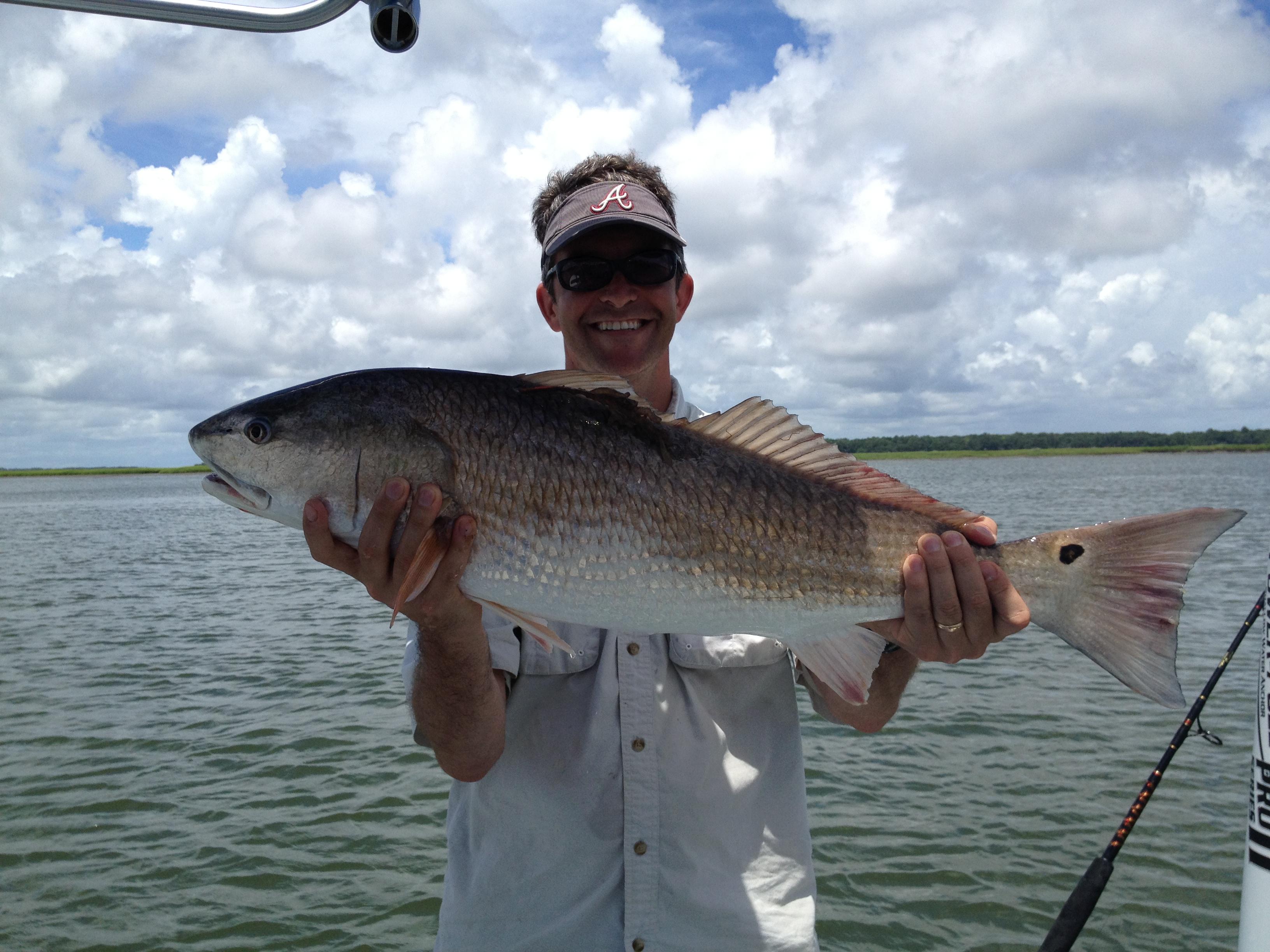 July inshore fishing report hiton head fishing adventures for Fishing in hilton head