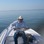 fly fishing for cobia