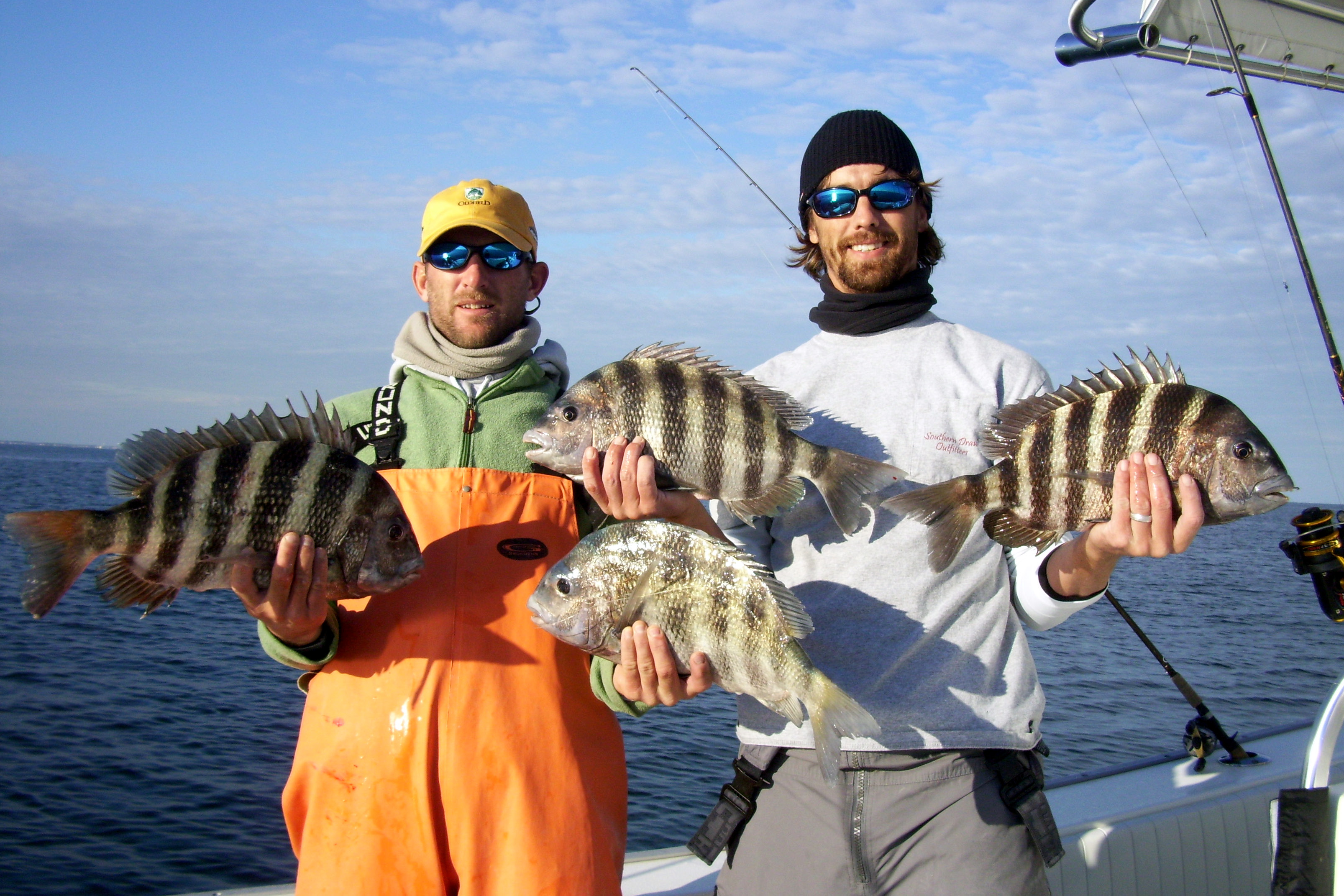March Fishing Forecast for hilton Head, SCSaltwater Sheepshead Fish Good To Eat