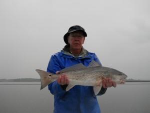 Hilton Head Redfish